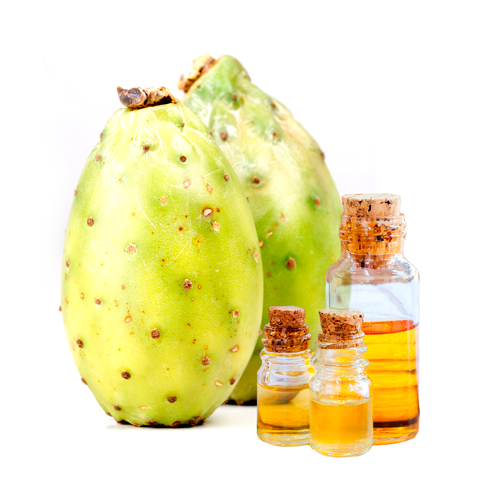 Queen Odelia prickly pear seed oil based beauty products